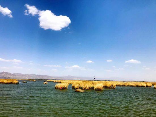 图为游客在景区喂食天鹅。  图为哈素海美丽风景。  图为小朋友同小火车合影。 中新网内蒙古新闻5月6日电(张林虎)6日,经过全新升级的哈素海印象主题旅游开门迎客,再一次对外展示出塞外西湖的魅力。 哈素海位于呼和浩特市土默特左旗境内,距呼和浩特65公里。蒙古语哈拉乌素海的简称,意为黑水湖,有塞外西湖之美誉。 置身哈素海,极目远眺,只见晴空碧水,蔚蓝一片,近看湖内芦苇丛生,鸟飞鱼跃,岸边凉亭水榭、绿树成荫,是休闲游玩的好去处。市民李先生如是说道。 据了解,从6日开始,哈素海景区新增各种游乐项目