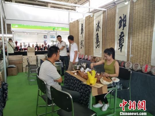 第五届中国呼和浩特国际茶产业博览会启幕